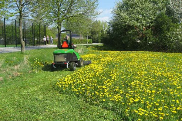 Selbstfahrender Schlegelmäher im Einsatz auf Blumenwiese